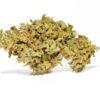 Green Pepper Dolomitigrow, canapa legale, canapa light, cannabis italia, cannabis legale, cannabis light, cbd, fiori cannabis, fiori cbd, flower cbd, idroponica, infiorescenze