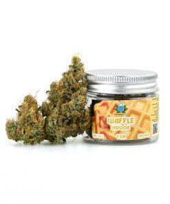 canapa legale, canapa light, cannabis italia, cannabis legale, cannabis light, cbd, fiori cannabis, fiori cbd, flower cbd, idroponica, infiorescenze