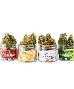 kit degustazione Cannabis light indoor