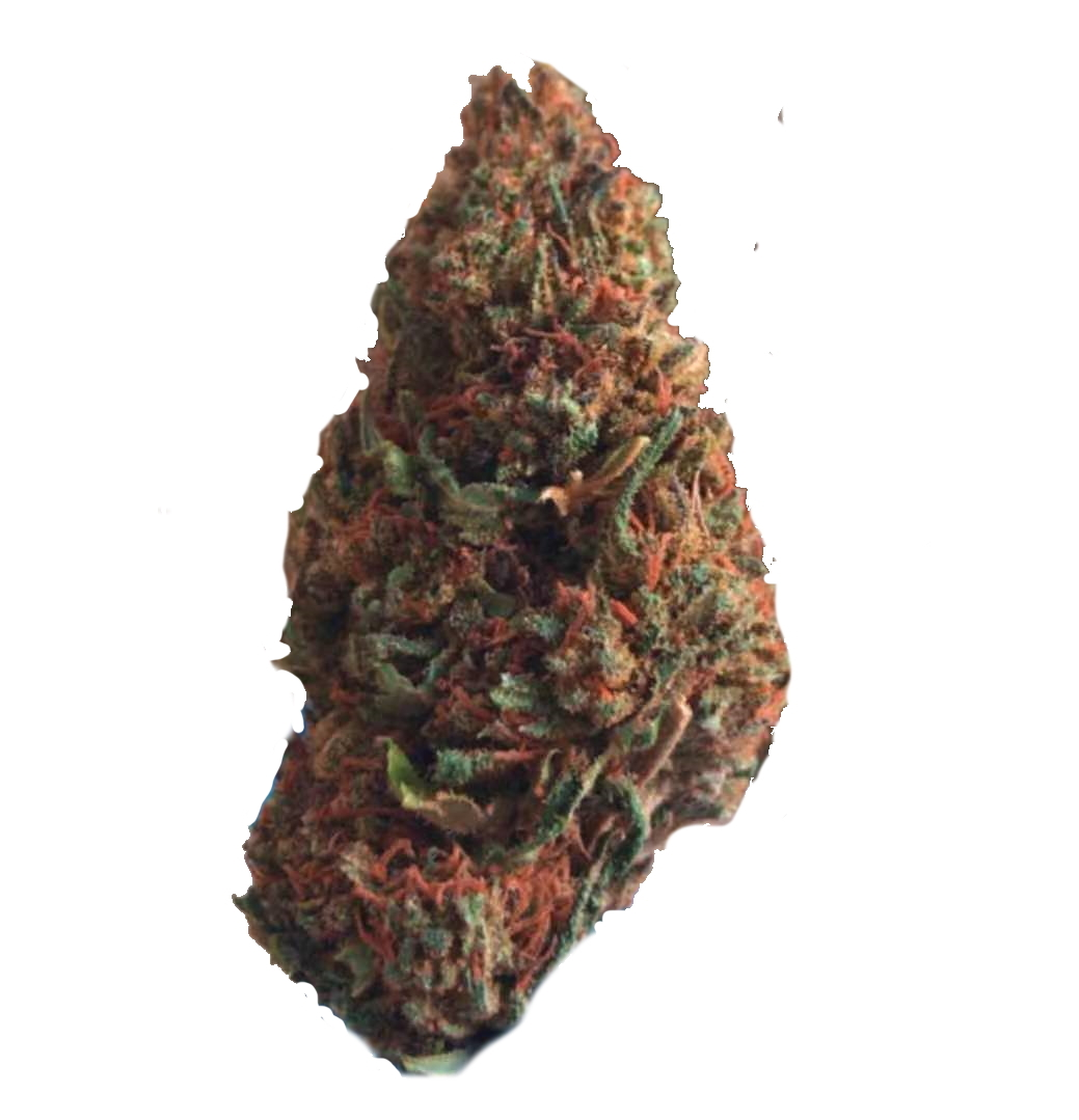 cannabis light cbd coriandolo